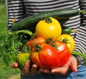 vegetables-speciale natura